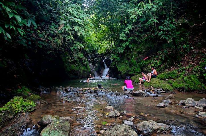 Pacífico Sur Costarricense - Golfito - Гестхаус