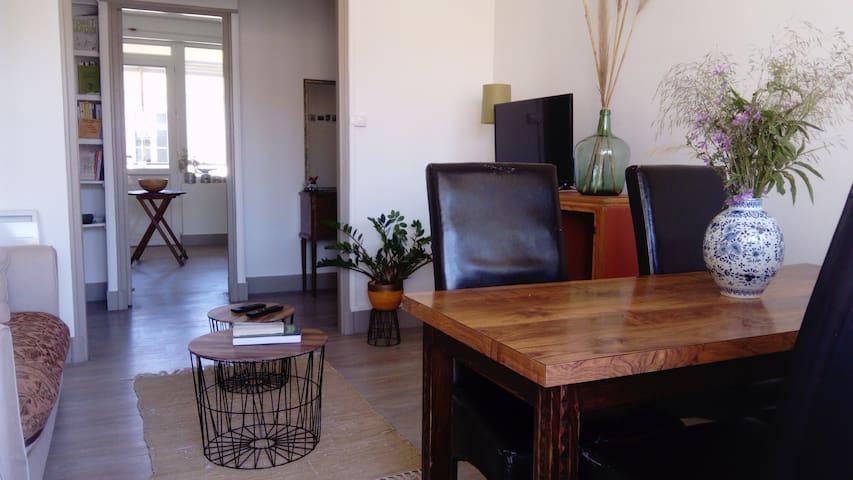 Bel appartement au cœur d'Arles avec terrasse