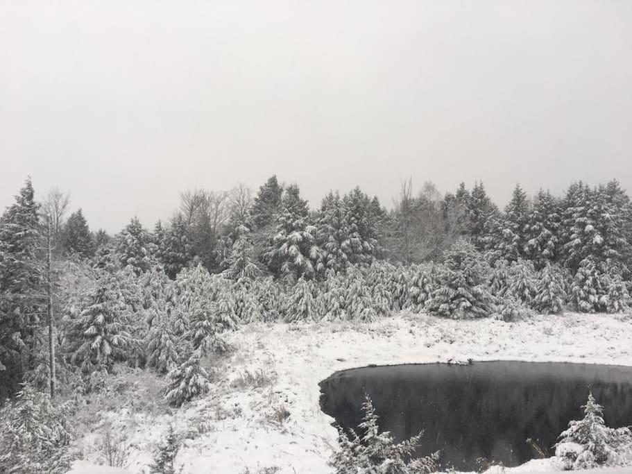 Winter Wonderland in Windham NY