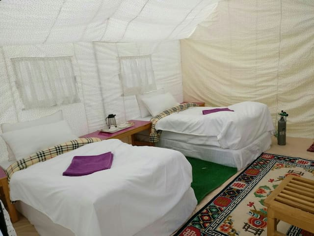 REGAL CAMP,  Pangong
