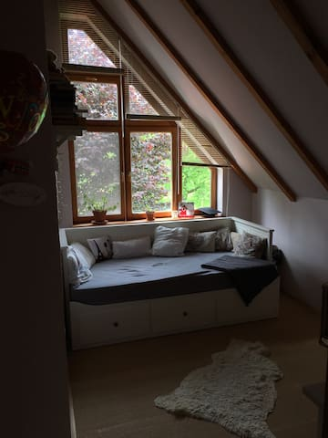 Bedroom 2 with convertible couch/ bed for 1 person