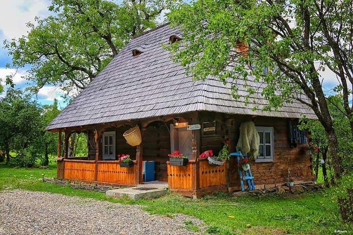 Casa Călina Breb