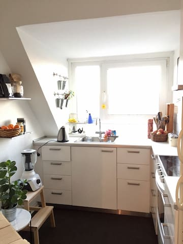 Rummelig og hyggelig lejlighed tæt på centrum - Aalborg - Apartamento