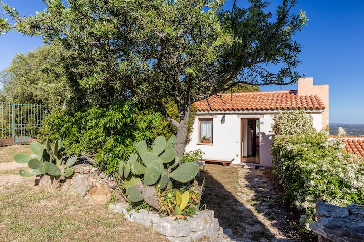 Small STAZZO (COTTAGE) in the Gallura countryside