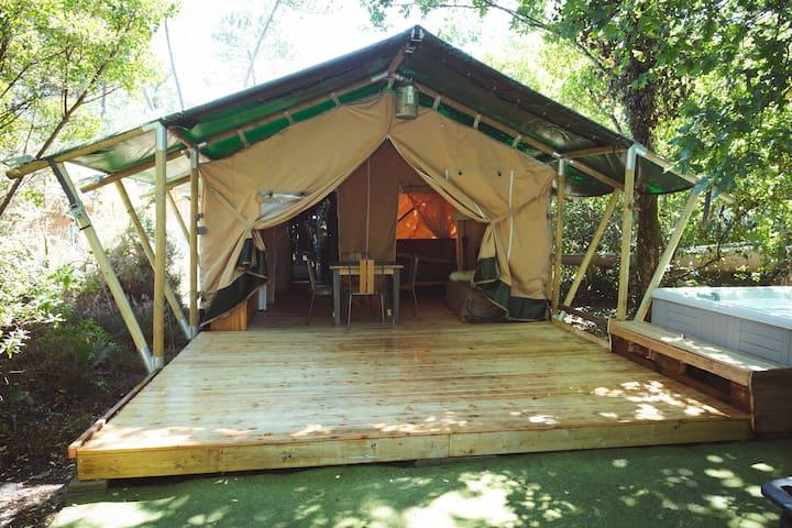 Tente LODGE Atypique+SPA sur le Bassin d'Arcachon