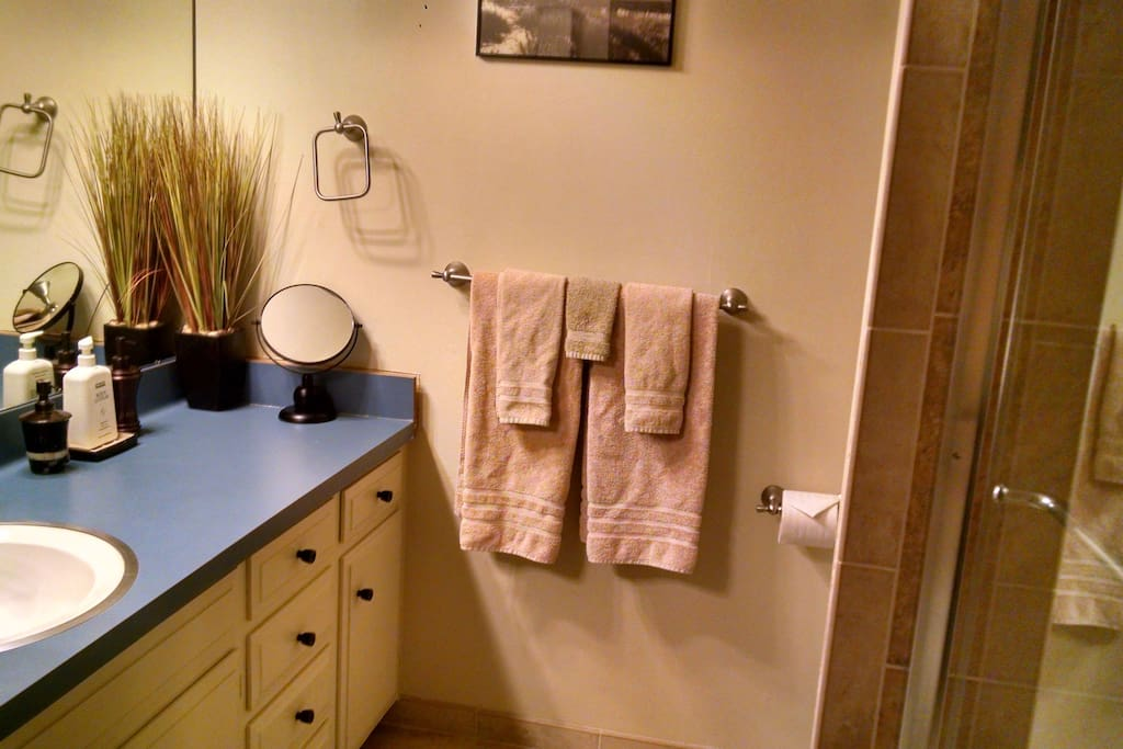 1st Floor - Master Bathroom