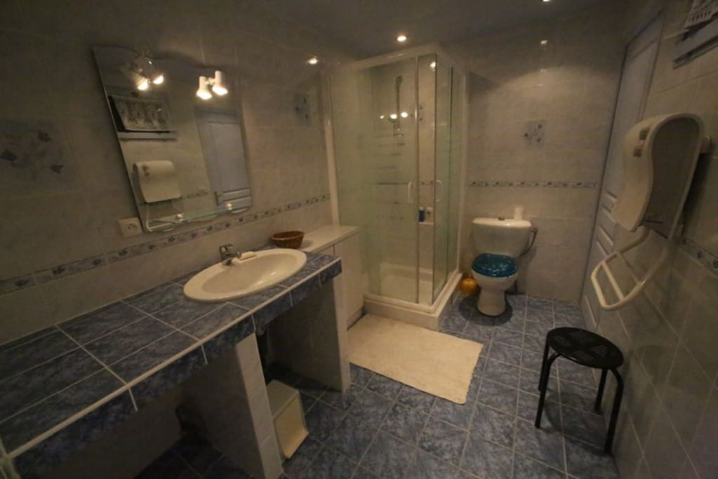 La salle de bain avec WC est très grande