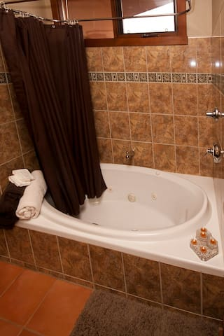 This is the only Jacuzzi Jetted tub in the B&B and is in the Jacuzzi room, queen bed, private patio.