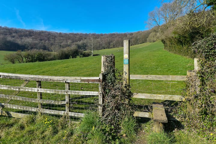 One of the many footpaths leading up to Uley Bury