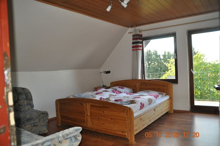 Family room near Frankfurt Hahn - Kleinich - House