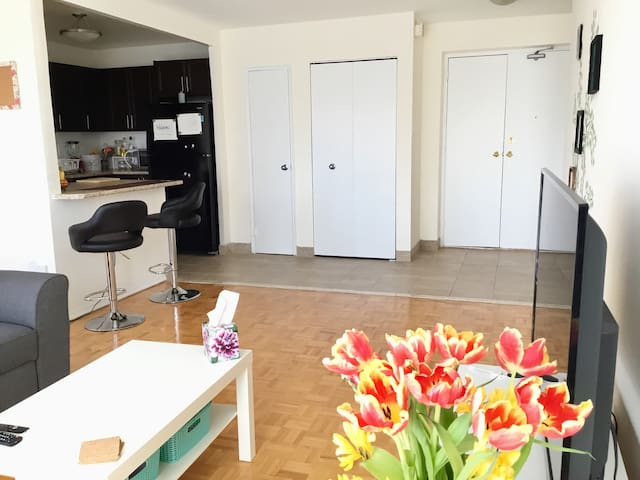 Entire spacious and modern 1-bedroom apartment