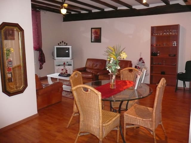Appartement entier en duplex - Ay - Apartment