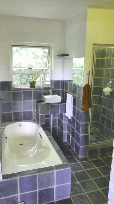 This is the bathroom. Has separate shower, bath and toilet.