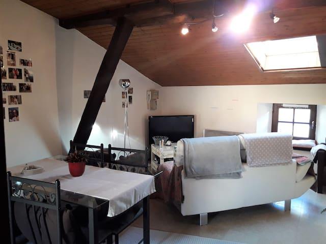 Appartement cosy Poitiers situé en centre ville - Poitiers - Leilighet