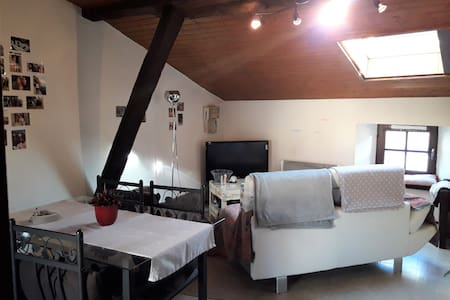 Appartement cosy Poitiers situé en centre ville - 普瓦捷(Poitiers) - 公寓