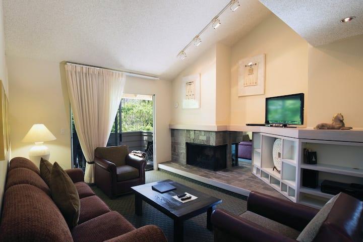 Big Cozy w Fireplace & Patio - 2 bedroom sleeps 6
