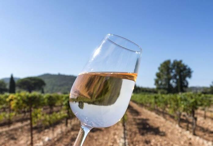 Gîte de la Sablière vignoble Aixois et piscine