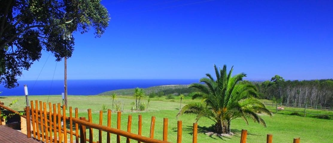 Farm-feel with sea & forest views