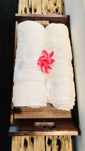 High-Quality Towels From Ritz Carlton Hotel.