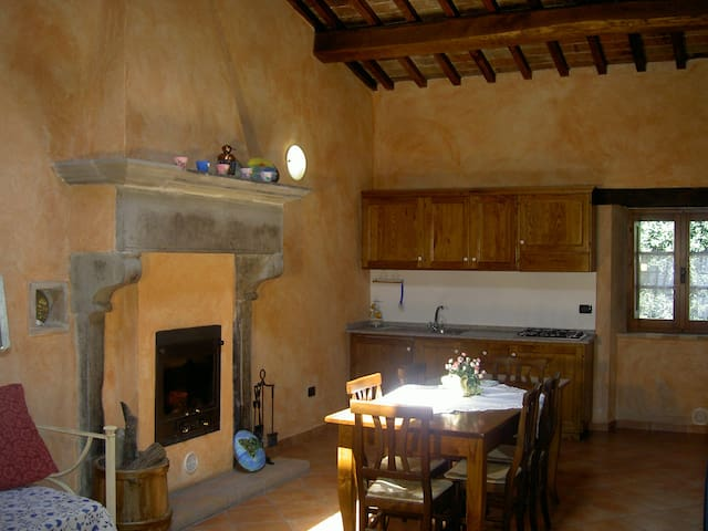 Colonnellihouse-vecchio camino - Trestina - Appartement
