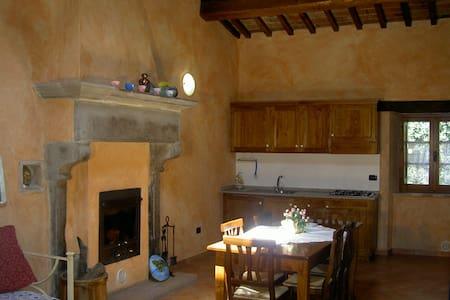 Colonnellihouse-vecchio camino - Trestina - Apartmen