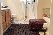 2nd Floor Master Bathroom Area