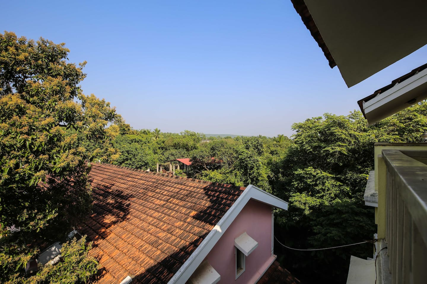 View from the balcony of the surrounding trees & hills