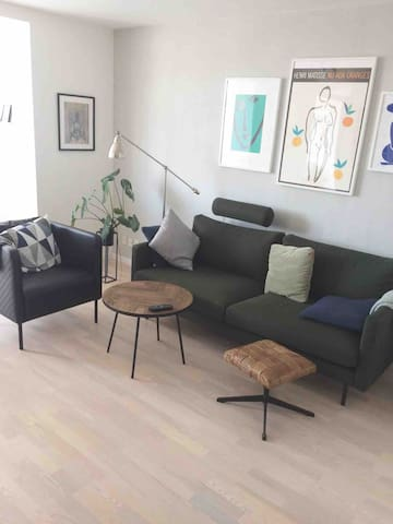 Couch or mattres for rent in big apartment
