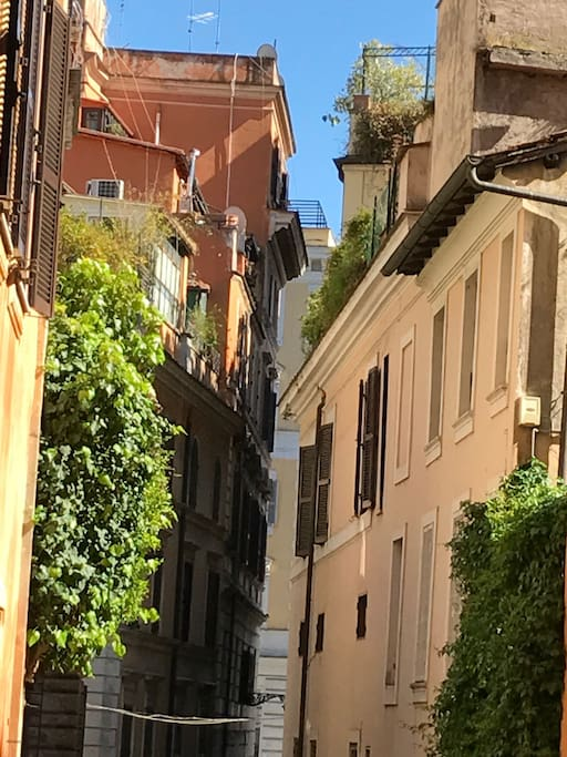 OUR STREET  Typical 'vicolo' in rione monti :-)
