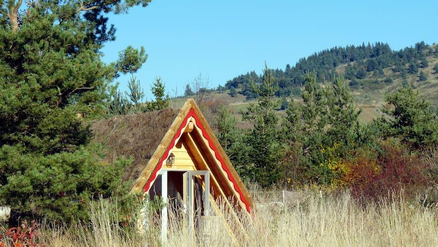 Maison triangle en bois végétalisée, vue Gévaudan - Rauret - Earth House