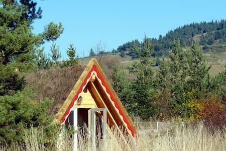 Maison triangle en bois végétalisée, vue Gévaudan - Rauret - Földház