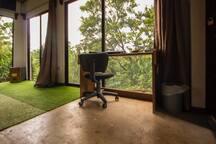 Patacaliente Studio - Mi Primer Pleito