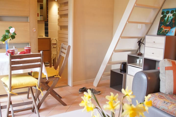 private studio in the Nantes vineyard. - Saint-Lumine-de-Clisson - Квартира