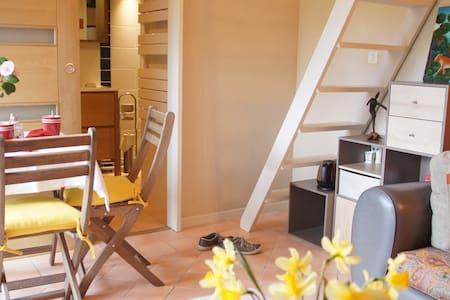 Independent studio in the Nantes vineyard. - Saint-Lumine-de-Clisson - Apartamento