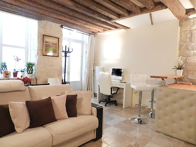 Living room: The 23 square meters living room has 2 double glazed windows facing street . It is equipped with : dining table for 4 people, sofa, coffee table, cable, TV, phone, blu-ray DVD, desk, natural stone floor.