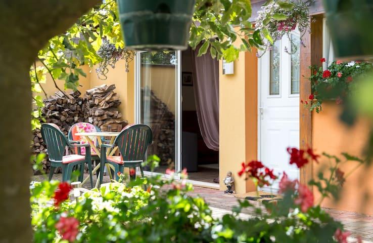 Gîte Charme Ottrott Alsace 3 épis