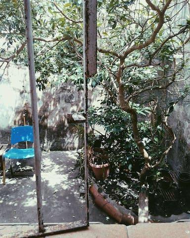 Hospedaria A bota - Belém - House