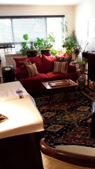 LivingroomDi