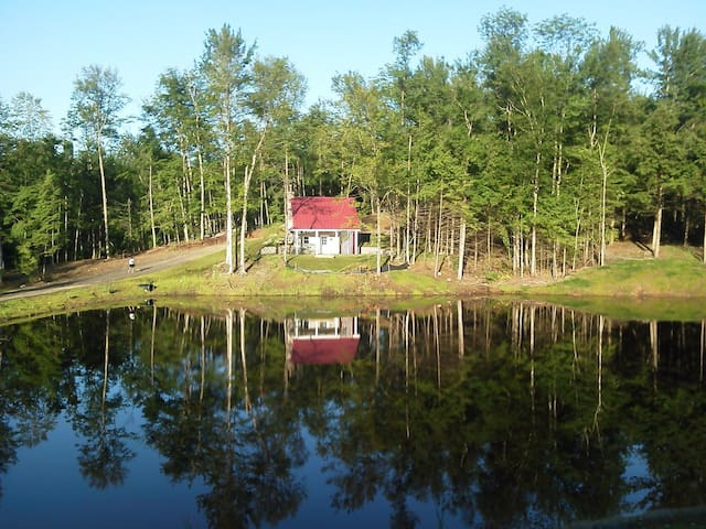 Gorgeous Adirondack cabin only 4hrs/NYC!