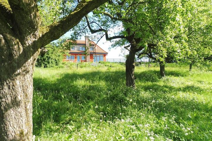 Kleine Villa im wilden Garten