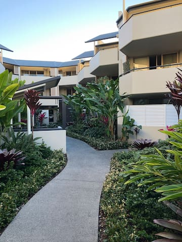 Charming apartment in Newstead