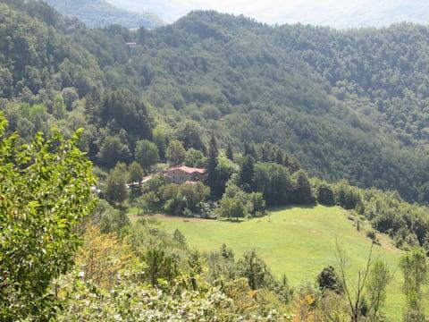 SO MAGIC - La casa nel bosco