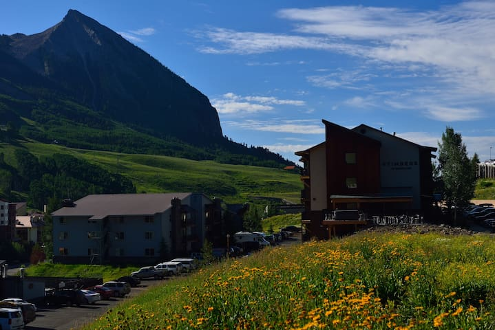 Comfort Stay in the Mountains - 2BD/1BA Condo - Crested Butte - Wohnung