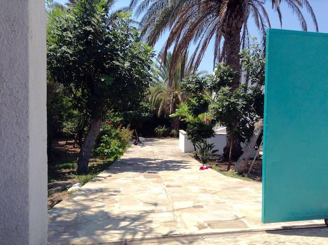 OUTOPIA Naxos