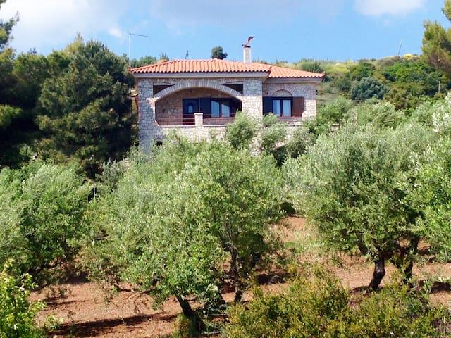 Olive Grove stonemade Residency - Petalidi - Dom
