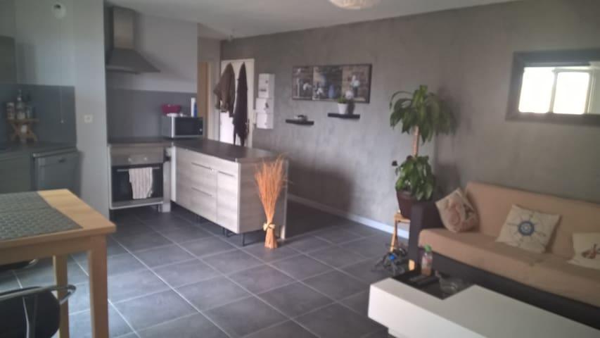 Appartement charmant et lumineux, 2p et garage - Strasbourg - Daire