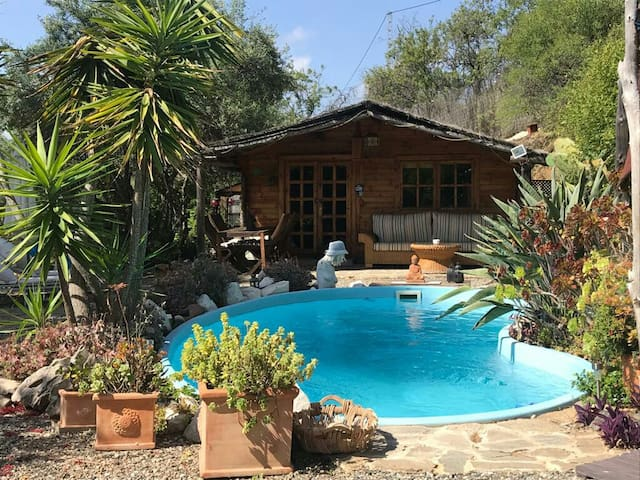 Beautiful Wooden Cabin with pool