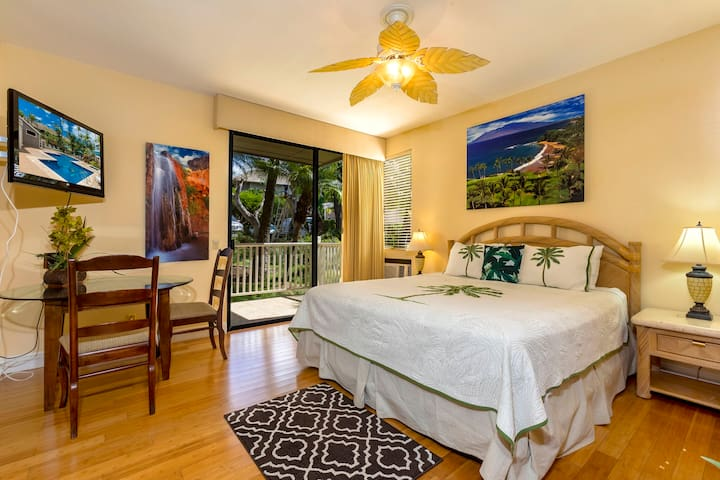 Master bedroom with AC!