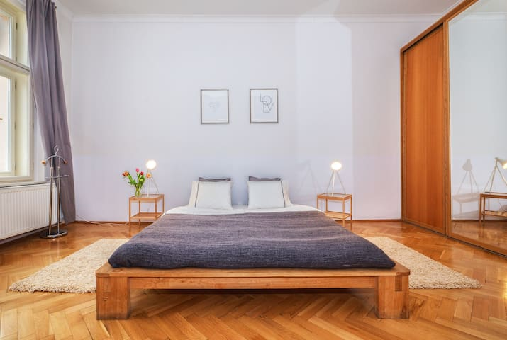 Large flat close to Charles bridge and Vltava