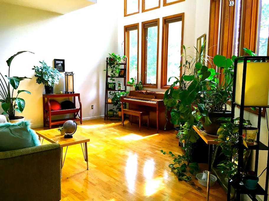sky-high windows in living room # 2, plus a piano for you to play and meditation cushions to use. it is boulder, after all!